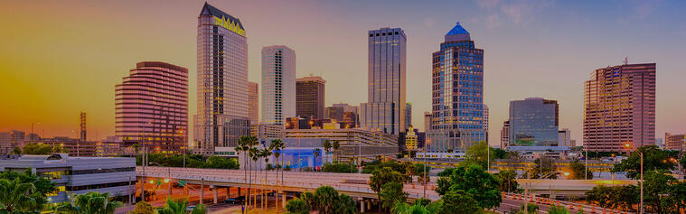 View of Downtown Tampa Bay